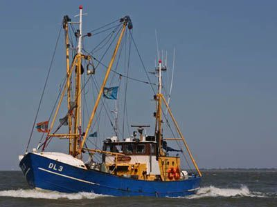 Shrimp Cutter with licences 1961 Sailboats for Sale