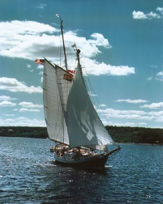 Peterson Coaster Main Topsail Schooner 1963 Schooner Boats for Sale