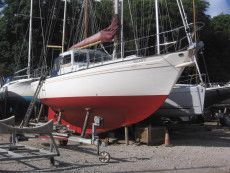Boats for Sale & Yachts Neptunian 33 1972 All Boats