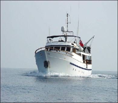 Southern Marine Ltd. 1975 All Boats