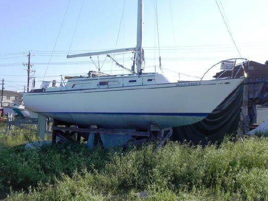 Islander 30 1976 All Boats