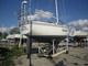 Catalina 30SLOOP 1977 Catalina Yachts for Sale Sloop Boats For Sale