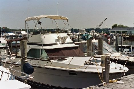Silverton 31 Convertible 1978 All Boats Convertible Boats
