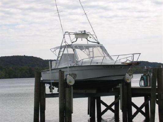 Blackfin 28 Sportfish Express 1979 Sportfishing Boats for Sale