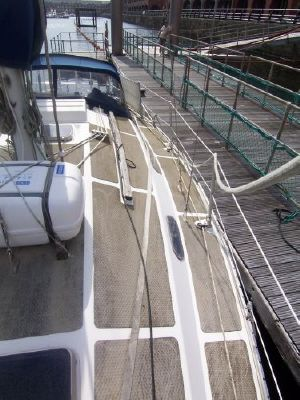 1980 dolphin 31 reduced westerly sabre  17 1980 Dolphin 31 REDUCED westerly sabre