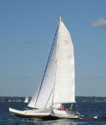 Boats for Sale & Yachts Newick trimaran Val 31 1980 All Boats
