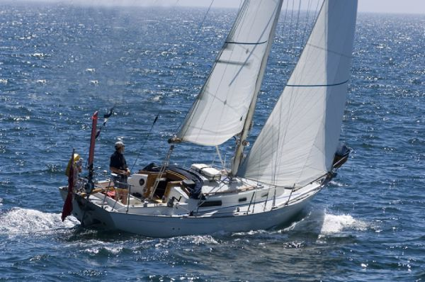 Boats for Sale & Yachts Rustler 31 1980 All Boats