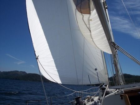 C&C YACHTS 40 1981 All Boats