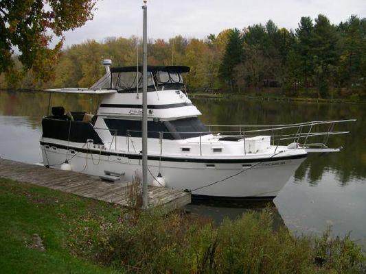 Gulfstar 38 Motor Cruiser 1981 All Boats