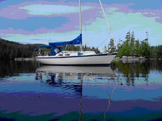 Boats for Sale & Yachts Hinterhoeller Niagara 1981 All Boats