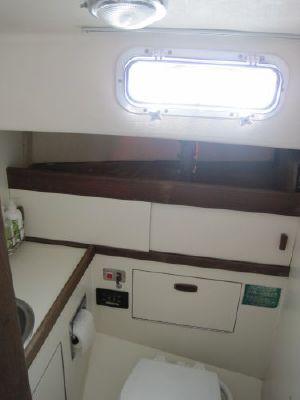 Sabre 34 1981 All Boats