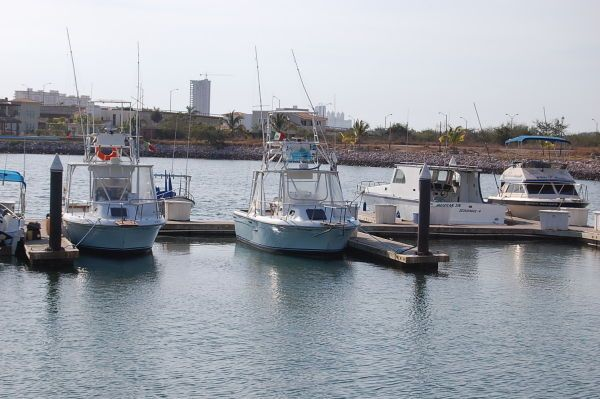 Boats for Sale & Yachts Robalo Express Fisherman 1982 Robalo Boats for Sale