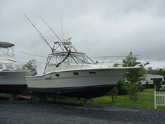 Boats for Sale & Yachts Aquasport 290 Express Sport Fisherman 1983 All Boats Fisherman Boats for Sale