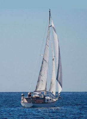 Cape Dory 30 1983 All Boats