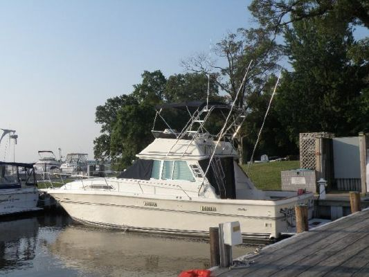 1983 sea ray 390 sedan sportfish  1 1983 Sea Ray 390 Sedan Sportfish