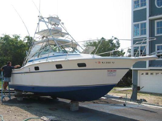 1984 Aquasport 290 Tournament Boats Yachts For Sale