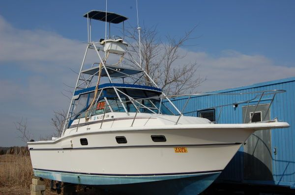 Aquasport 290 XF Express Fisherman for Sale **2020 New $14.900 USD All Boats