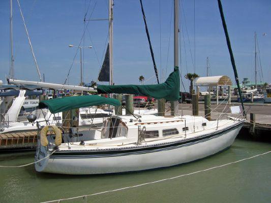 Capital Newport 1984 All Boats