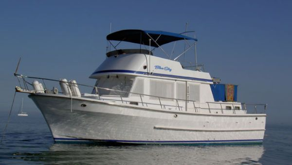 Present *38 Sedan* 1984 All Boats