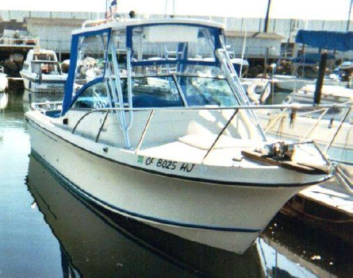 Skipjack 24 Hard Top 1984 All Boats