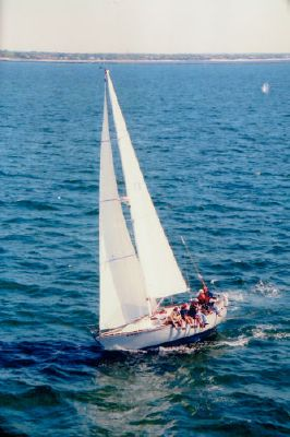 C&C 35 MK III 1985 All Boats