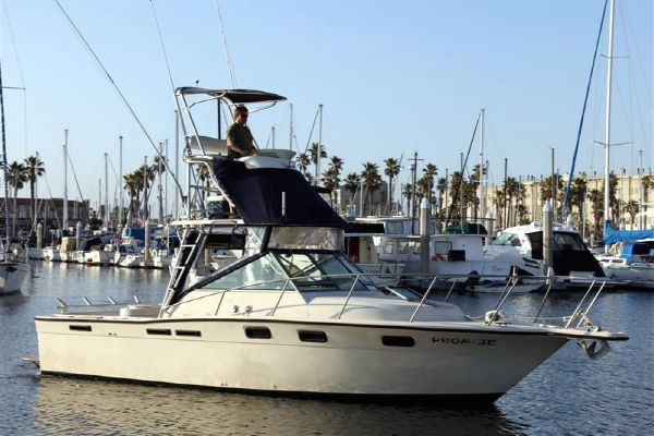 Tiara 2700 Pursuit 1985 All Boats