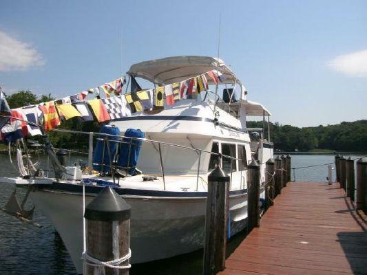 Tradewinds Marine Trader Sundeck 1985 All Boats