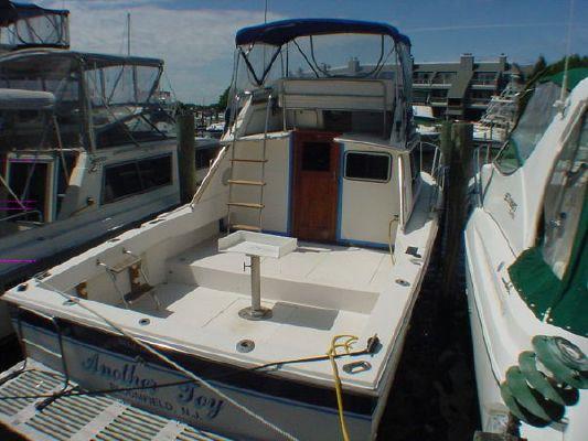 Boats for Sale & Yachts Wellcraft 2900 Sport Bridge 1985 Wellcraft Boats for Sale