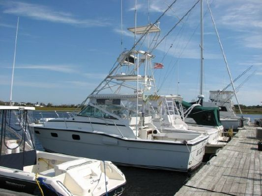 Boats for Sale & Yachts Aquasport 290 1986 All Boats