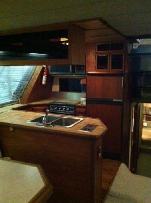 1986 bayliner 4550 motoryacht  6 1986 Bayliner 4550 Motoryacht