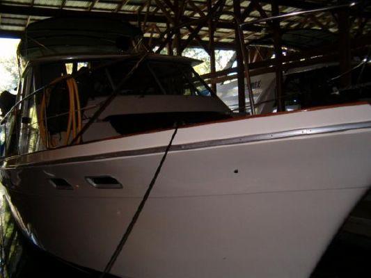 1986 bayliner 4550 pilothouse  1 1986 Bayliner 4550 Pilothouse
