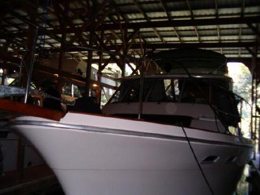 1986 bayliner 4550 pilothouse  2 1986 Bayliner 4550 Pilothouse