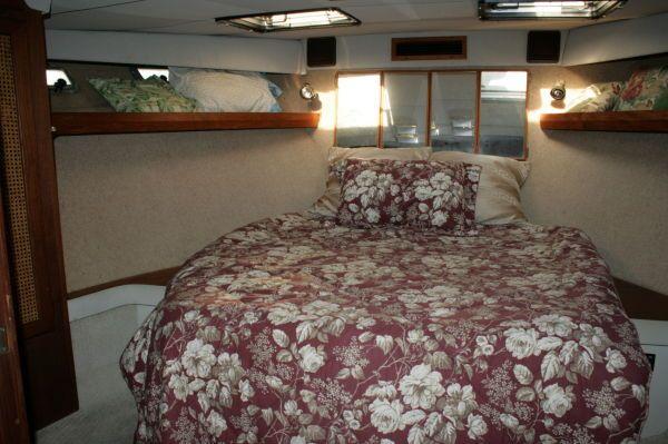 1986 bayliner 4550 pilothouse free slip for 6 motnhs  14 1986 . Bayliner .4550 Pilothouse FREE SLIP FOR 6 MOTNHS