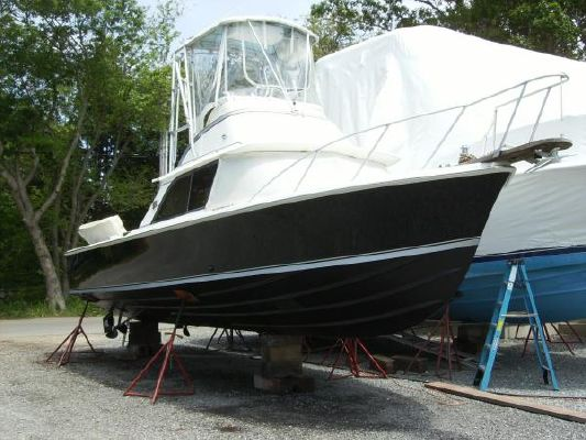 Boats for Sale & Yachts Bertram Silver Anniversary Edition 1986 Bertram boats for sale