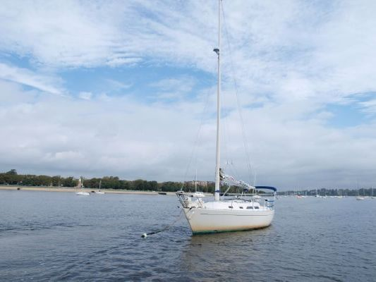 Boats for Sale & Yachts Freedom Yachts 30 1986 All Boats