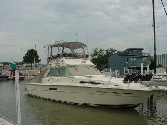 1986 sea ray 390 sport fish boats yachts for sale for Sea ray fish