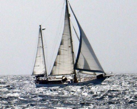 East Coast Ship Company Hedonista 44 1987 49' All Boats
