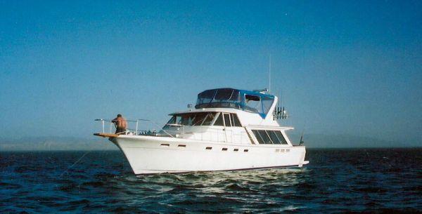 1987 bayliner 4550 motoryacht  1 1987 Bayliner 4550 Motoryacht
