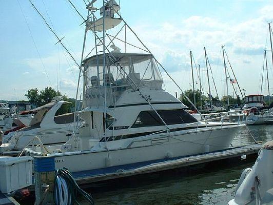Bertram 37' Convertible Sport Fish 1987 Bertram boats for sale