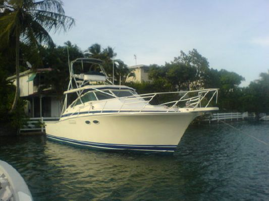 1987 Bertram 38 Special Boats Yachts For Sale