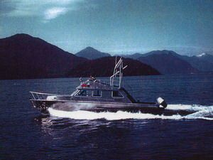Raider Aluminum 1987 All Boats