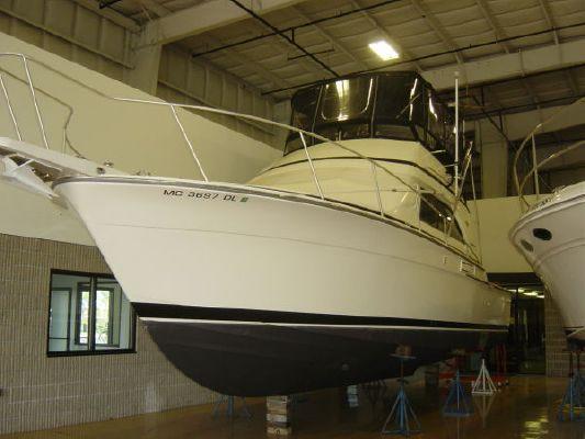 Bertram 37' Freshwater Convertible 1988 Bertram boats for sale