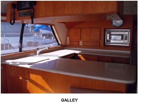 Bertram Convertible (JDJ) 1988 Bertram boats for sale