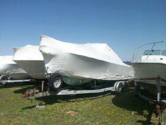 Boats for Sale & Yachts Shamrock Predator 1988 Motor Boats