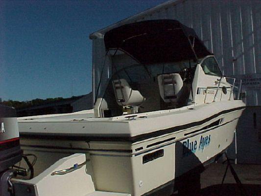 Stamas 1988 All Boats