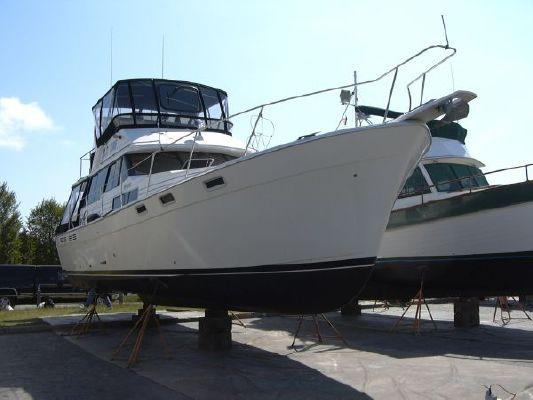 Boats for Sale & Yachts Bayliner 3818 1989 Bayliner Boats for Sale
