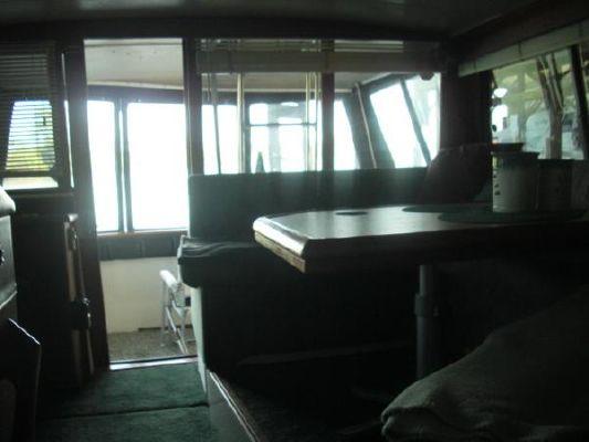 Bayliner 3888 MY Sedan 1989 Bayliner Boats for Sale