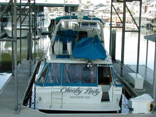 1989 bayliner 4588 motoryacht  2 1989 Bayliner 4588 Motoryacht