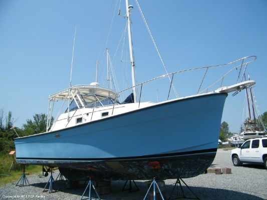 Luhrs 30 Alura 1989 All Boats