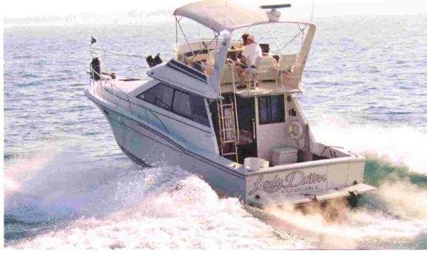 Wellcraft Cozumel 1989 Wellcraft Boats for Sale